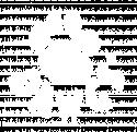 Canada Dawgs Coupon Codes logo