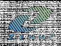 Zenni Optical Coupon Codes logo